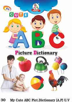 Picture Dictionary Book